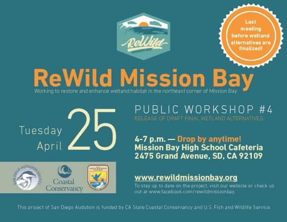 ReWild MB Workshop Postcard (PW4)