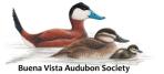 Buena Vista Audubon Logo